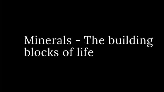 Minerals – The building blocks of life